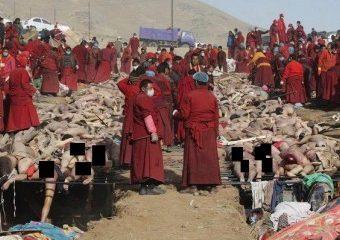 اخراج و کشتار مسلمانان میانمار یادآور فجایع صهیونیست هاست/ در صورت تداوم نسل کشی باید مسلمانان میانمار به تجهیزات دفاعی مجهز شوند