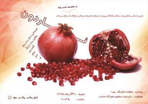 جشن ناردون ویژه شب یلدا در دانشگاه بیرجند برگزار میشود